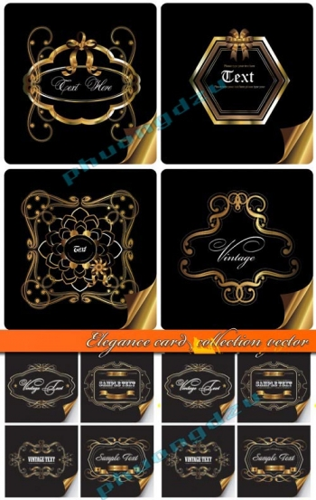 Elegance card collection vector